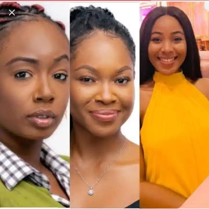 BBNaija 2020: Why I don't care about Tolanbaj, Erica's Disqualification 27